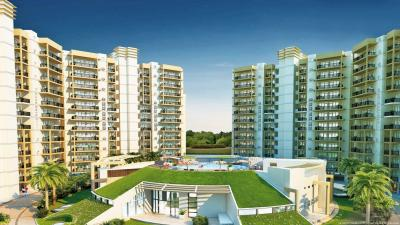Gallery Cover Pic of Orris Aster Court Premier