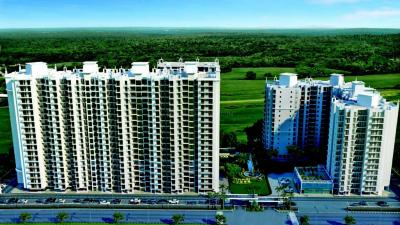Gallery Cover Image of 1150 Sq.ft 2 BHK Apartment for rent in MS Royal , Kaggadasapura for 19000