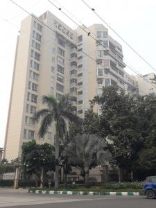 Gallery Cover Image of 2200 Sq.ft 3 BHK Apartment for rent in Jaypee Jade Apartments, Jaypee Greens for 77000
