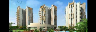 Gallery Cover Image of 590 Sq.ft 1 BHK Apartment for rent in Pigeon Spring Meadows, Noida Extension for 7000
