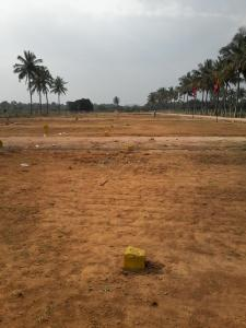 Gallery Cover Image of 1457 Sq.ft 3 BHK Independent Floor for buy in White Park, Chansandra for 5900000