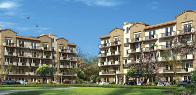 Gallery Cover Image of 1975 Sq.ft 4 BHK Independent Floor for buy in Emaar Emerald Floors Premier Phase 3, Sector 65 for 18500000