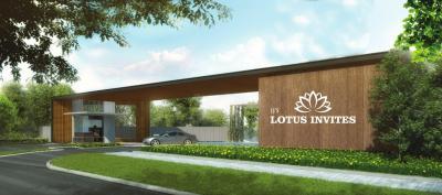 JJ Lotus Invites