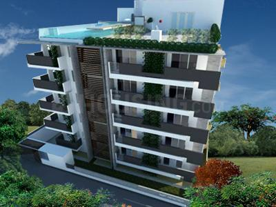 Nest The Urbanite