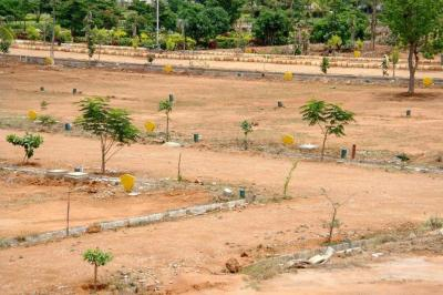 10000 Sq.ft Residential Plot for Sale in Mumatpura, Ahmedabad