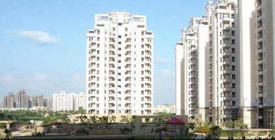Gallery Cover Image of 2500 Sq.ft 4 BHK Apartment for rent in Orchid Petals, Sector 49 for 55000