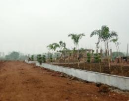 Agrawal Sage Milestone Phase I A