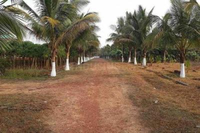 Residential Lands for Sale in Ekaant Ekaant Forest Homes