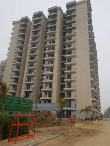 Gallery Cover Image of 1005 Sq.ft 2 BHK Apartment for rent in MR Proview Palm Resort, Raj Nagar Extension for 9500