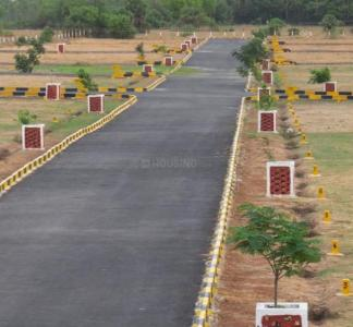 Residential Lands for Sale in Wisdom Sri Sathya Sai Nagar