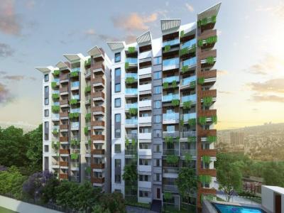 Elegant Terraces