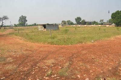 Shree Nagar