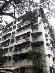 Gallery Cover Image of 610 Sq.ft 1 BHK Apartment for buy in Enclave, Kandivali West for 8000000
