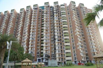Gallery Cover Image of 840 Sq.ft 2 BHK Apartment for buy in SG Grand, Raj Nagar Extension for 3300000