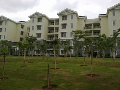 Gallery Cover Image of 1170 Sq.ft 2 BHK Apartment for rent in Sobha Dew Flower, Agrahara for 15000