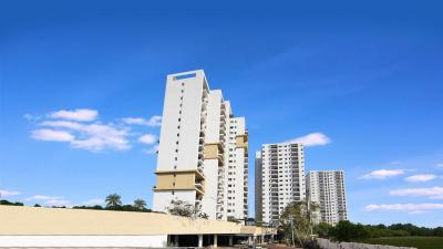 Gallery Cover Pic of Incor PBEL City