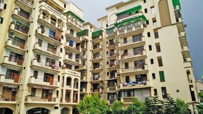 Gallery Cover Image of 2450 Sq.ft 4 BHK Apartment for rent in Amrapali Exotica, Sector 50 for 26000