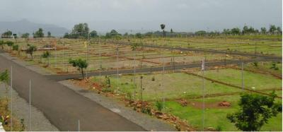 Residential Lands for Sale in Tirupati Silver City