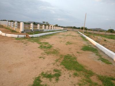 Gallery Cover Pic of Mudra Resorts And Farm Land