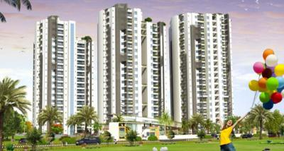 Gallery Cover Pic of Crest Exotica Phase I