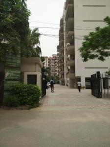 Gallery Cover Image of 2025 Sq.ft 3 BHK Apartment for rent in Chandra Apartments, Sector 55 for 45000