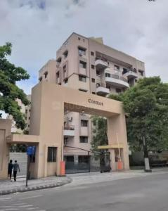 Gallery Cover Image of 1150 Sq.ft 2 BHK Apartment for rent in Magarpatta Cosmos, Magarpatta City for 22000
