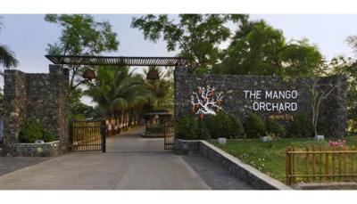 Residential Lands for Sale in Sai Universe The Mango Orchard
