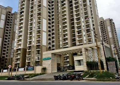 Gallery Cover Image of 506 Sq.ft 1 RK Apartment for buy in Nimbus The Golden Palms, Sector 168 for 3200000