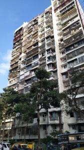 Gallery Cover Image of 950 Sq.ft 2 BHK Apartment for rent in Ocean View, Worli for 70000