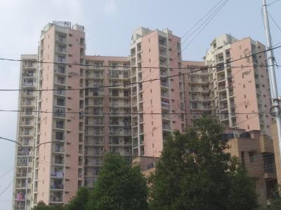 Gallery Cover Image of 1850 Sq.ft 3 BHK Apartment for rent in Supreme Tower, Sector 99 for 24000