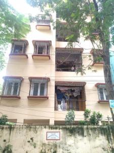 Camelia Apartment