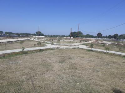 Atharva Real Pariyat Green Phase II