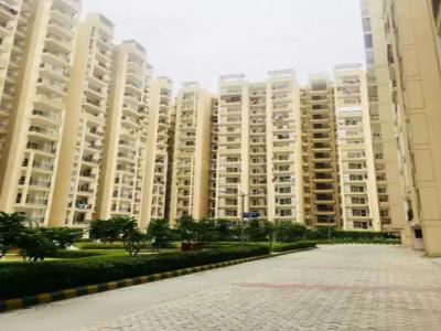 Gallery Cover Image of 1015 Sq.ft 2 BHK Apartment for rent in SCC Sapphire, Raj Nagar Extension for 13000