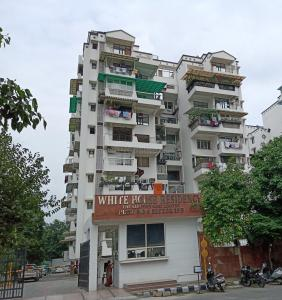 Gallery Cover Image of 1900 Sq.ft 3 BHK Apartment for rent in CGHS White House Residency, Sector 19 Dwarka for 35000