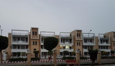 Gallery Cover Image of 1455 Sq.ft 3 BHK Apartment for buy in Ansal Town, Ansal City for 4000000