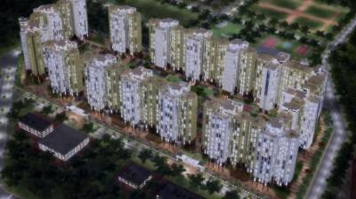 Gallery Cover Pic of Rare Townships Rising City