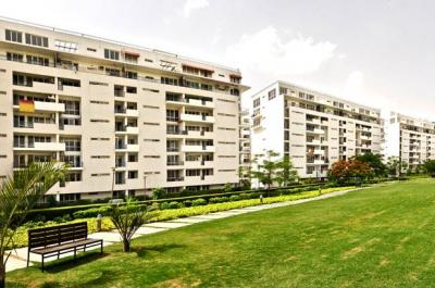 Gallery Cover Image of 2000 Sq.ft 3 BHK Apartment for rent in Vatika City , Sector 49, Gurgaon, Sector 49 for 42000