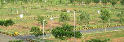 Gallery Cover Pic of Modi Pinewood Homes