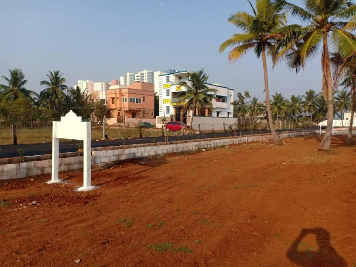 Gallery Cover Pic of Staar Serasa Avenue