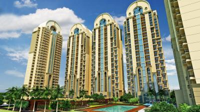 Gallery Cover Image of 1500 Sq.ft 3 BHK Apartment for buy in ATS Dolce, Zeta I Greater Noida for 6500000