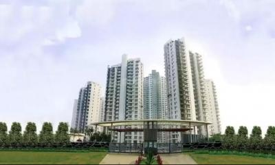 Gallery Cover Image of 5000 Sq.ft 4 BHK Apartment for rent in M3M Polo Suites, Sector 65 for 110000