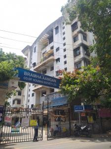 Gallery Cover Image of 560 Sq.ft 1 BHK Apartment for rent in Brahma Angan Society, Kondhwa for 13000
