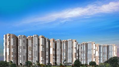 Gallery Cover Image of 934 Sq.ft 2 BHK Apartment for rent in Exotica Dreamville, Noida Extension for 10000