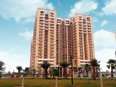 Gallery Cover Image of 1204 Sq.ft 2 BHK Apartment for rent in Arihant Ambar, Noida Extension for 12000