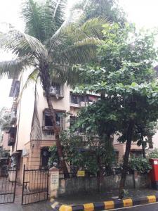 Gallery Cover Image of 625 Sq.ft 1 BHK Apartment for buy in PoonamLtd, Kopar Khairane for 7000000