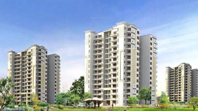 Gallery Cover Image of 2400 Sq.ft 4 BHK Apartment for rent in Tulip Purple, Sector 69 for 35000