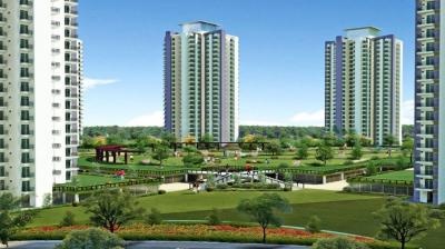 Gallery Cover Pic of RG Luxury Homes