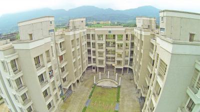 Tulsi Darshan