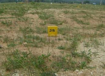 Residential Lands for Sale in Yesh Mega City