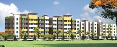 Gallery Cover Pic of Samasti 1001 Greens